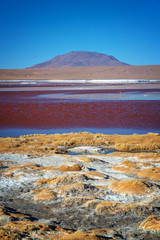 View of Laguna Colorada, colorful salt lake in Sur Lipez province, Potosi, Bolivia
