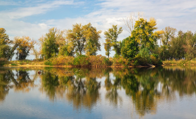 Tree reflections in the lake in autumn time. Beautiful park