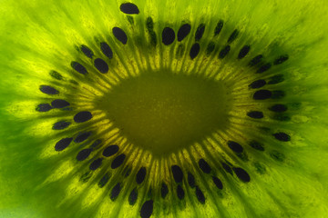 Kiwi fruit texture background with selective focus and crop fragment
