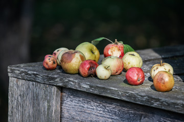 Number of rotting apples on the old wood surface