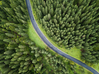 arial veiw of empty road in green forest. drone shot