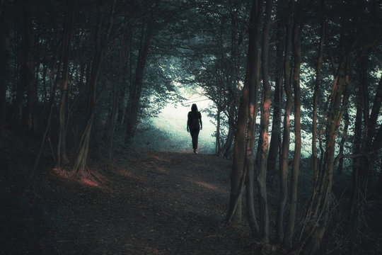 Back view of a woman silhouette walking alone along the forest path.