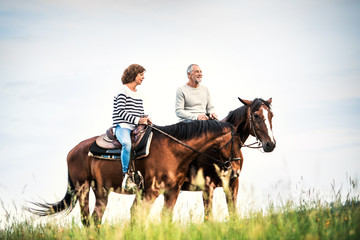 A senior couple riding horses in nature. Wall mural