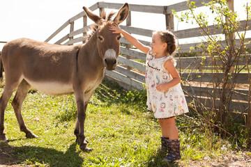 Foto op Plexiglas Ezel little girl with a donkey is resting on a farm in the summer