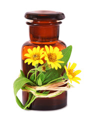 Arnica, old pharmacists bottle