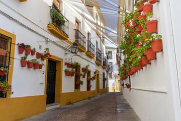 Tipica calle cordobesa