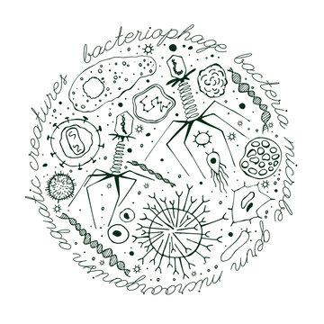 Virus hand-drawn image