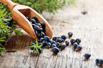 Juniper branch and wooden spoon with berries on a wooden table.