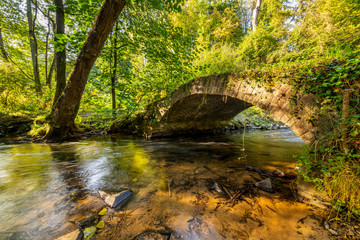 Old bridge over a creek in the forest