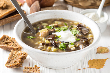 Forest mushroom soup with boletus, potatoes, pearl barley and sour cream. Classic Russian cuisine, delicious healthy vegetarian lunch. Autumn food