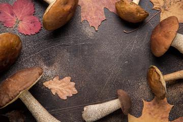 Forest mushrooms, autumn harvest, boletus, white and aspen. Raw fresh mushrooms on a dark background. Dry leaves