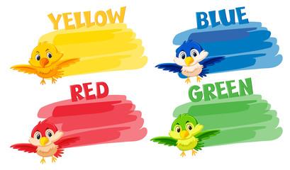 A diffrent color bird
