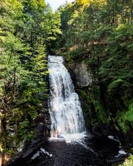Nature In Pennsylvania