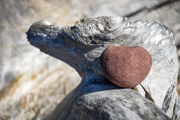 Pink red heart shaped rock on a piece of driftwood, concept