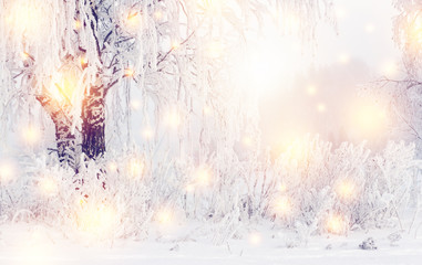 Magic christmas winter background. Shining Snowflakes and winter nature with hoarfrost on trees. Frosty winter. White snow on plants and trees. Cold and frost in outdoor.