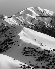Mount Hotham, Mount Feather Top