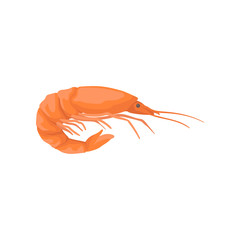 Flat vector icon of bright red shrimp with long claws. Marine product. Element for product packaging