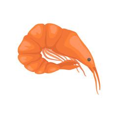 Flat vector icon of raw or boiled shrimp with bright red shell. Big fresh prawn with long claws. Marine fauna. Seafood theme