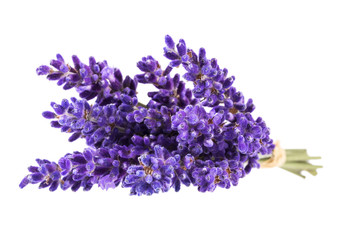 Papiers peints Lavande Bouguet of violet lavendula flowers isolated on white background, close up