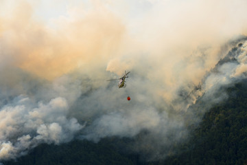 Aerial firefighting with helicopter on a big wildfire in a pine forest