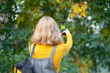 girl shoots autumn leaves on smartphone