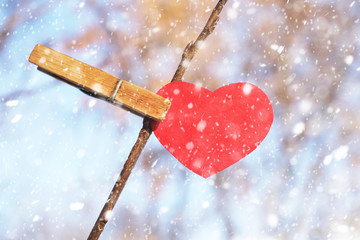 Red heart on a branch with a clothespin., Valentine day concept.