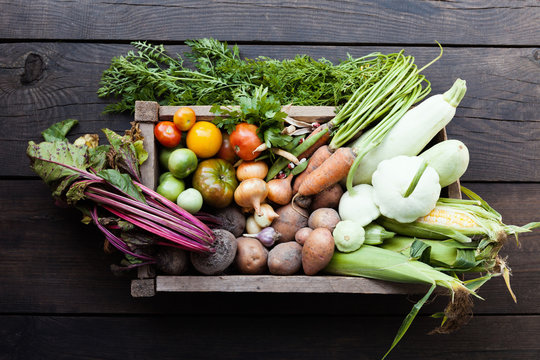 Fresh detox vegetarian food, farm harvest.