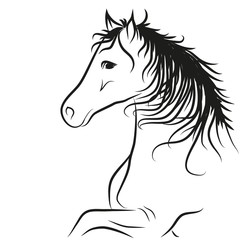horse drawn outline in black, coloring