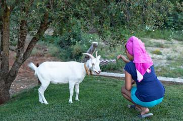 Girl Feeding White Goat 1