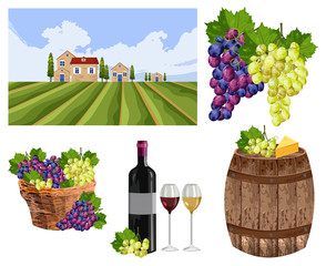 Vineyard set collection landscape, bottle, glass, barrel Vector
