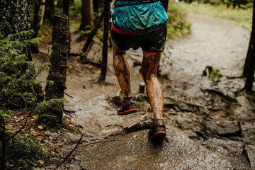 Fototapete - back dirty legs woman runner running autumn trail in forest