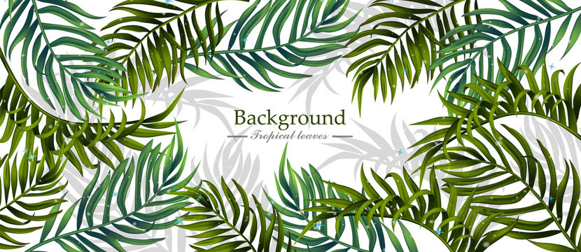 Tropical leaves Vector realistic background. Summer hot banner templates
