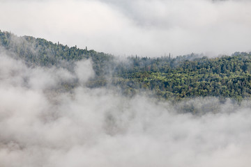 Fog in the valley between forested mountains