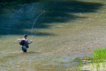 The fisherman catches fish by fly fishing