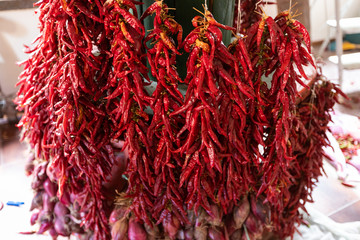 sweet and spicy peppers, called Pipi, typical product of southern Italy, Orsomarso, Calabria, Italy