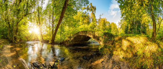 Photo sur Plexiglas Miel Old bridge over a creek in the forest with bright sun shining throug the trees