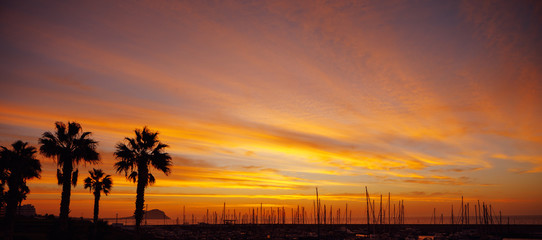 orange sunrise in a port with yacht masts and palm trees