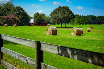 A Small Country Farm With Red Barn In The Background And Round Hay Bales Out