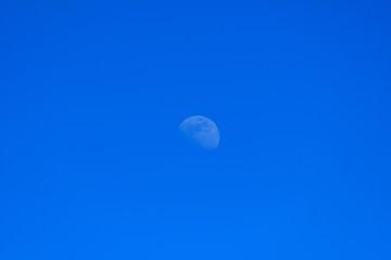 炎天下に見る昼間の月