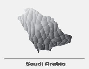 Saudi Arabia Black and White Network Map. Vector logo Illustration
