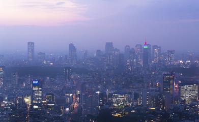 東京風景・トワイライト・新宿