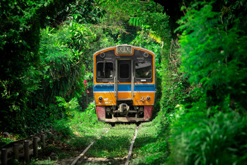 Vintage Train Running Through Tunnel Naturally Created From Trees Along the Railway. Amazing Scenery in Bangkok, Thailand.
