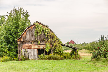 Colorful Barns in a Rural Area