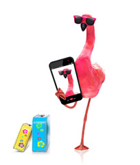 flamingo taking a selfie