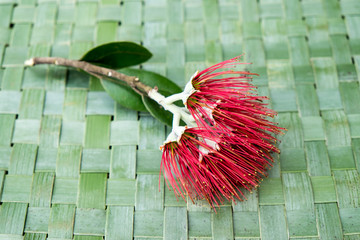New Zealand Christmas Tree or Pohutukawa flower on woven green flax kete background - kiwiana xmas theme
