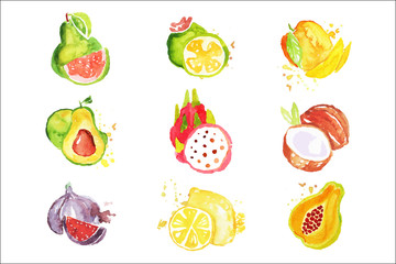 Set of colorful watercolor fruits vector Illustrations