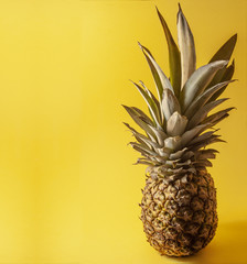 Single pineapple isolated on yellow background, Negative, space for text.