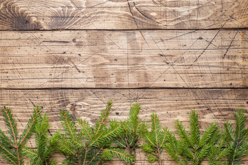 Christmas tree on wooden Board with copy space.
