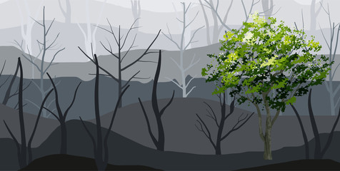 Background of green tree and forest fog. Vector.