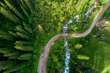 Pine forest from above, spring season, forest road and river